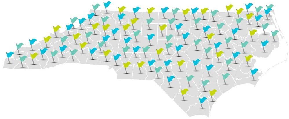 Coalition-Header-Image